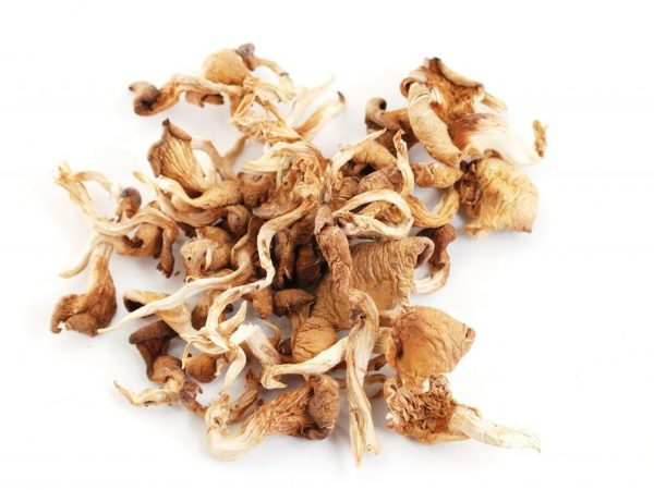 Отварить грибы с луковицей