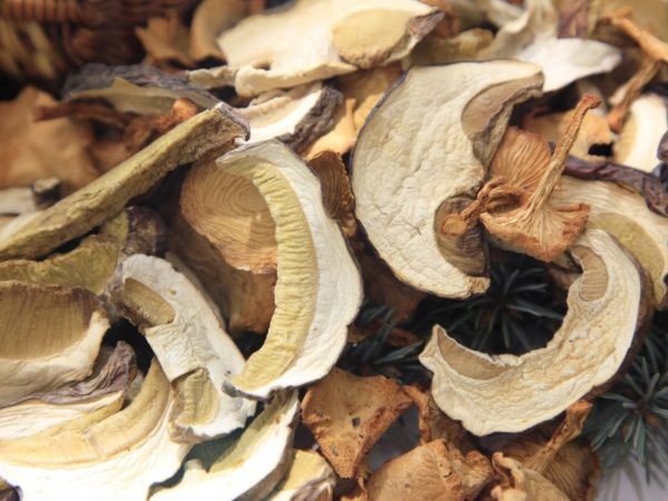 Где хранить сушеные грибы в домашних условиях