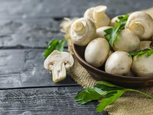 Какие витамины в грибах