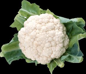 Какой витамин в капусте и чем он полезен