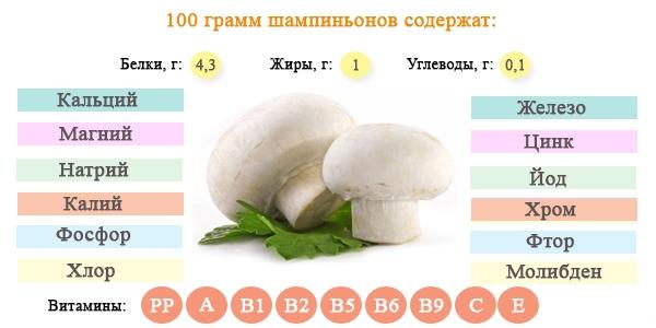 Шампиньоны: полезные свойства, вред, состав, БЖУ и калорийность