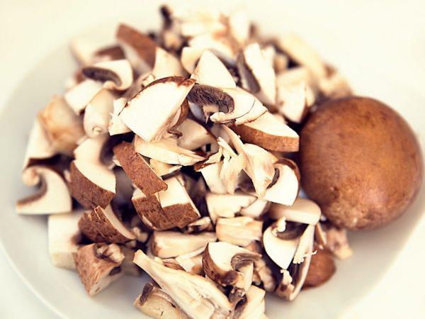 Хитин присутствует в клеточных оболочках белого гриба    Хитин присутствует в клеточных оболочках белого гриба