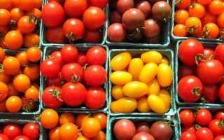 Удобрения для комнатных растений – ТОП-10 товаров на 2021 год