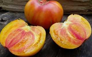 Томатный мед Салют: отзывы опытных фермеров, рекомендации по выращиванию, характеристика и описание сорта