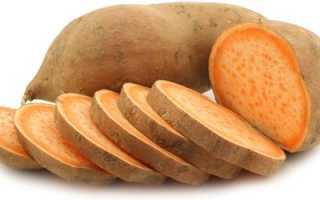 Сладкая картошка Батат