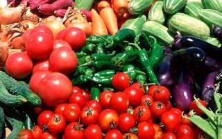Как избежать рисков при покупке профессиональных семян: 3 рекомендации по выбору