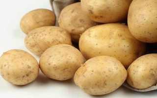 Описание картофеля Адретта