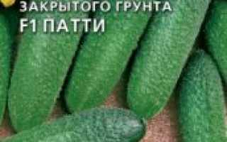 Описание сорта огурцов Патти