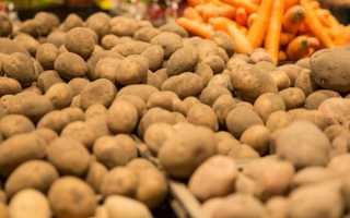 Правила хранения картофеля в погребе зимой