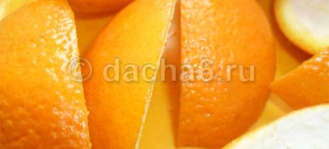 Как применять апельсиновые корки в саду