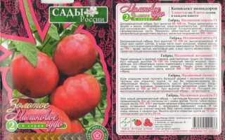 Чудо-малиновые томаты: описание и характеристика сорта, агротехника выращивания томатов, особенности формирования, отзывы, фото