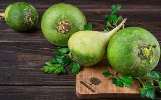 Зеленая редька: полезные свойства и противопоказания к употреблению