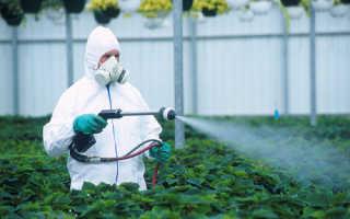 Меры предосторожности при работе с пестицидами