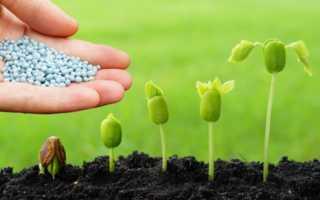 Действие пестицидов на живые организмы и окружающую среду