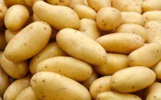 Применение протравителя для картофеля