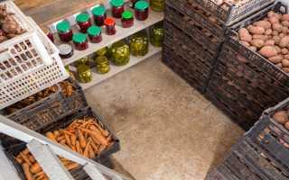 Правила изготовления ящика для картофеля