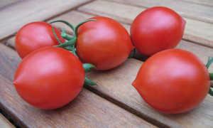 Русский куполообразный помидор F1: описание, отзывы, фото