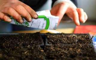 При первых признаках заболевания лечение следует проводить соответствующими препаратами, широкий выбор которых есть в любом садовом магазине