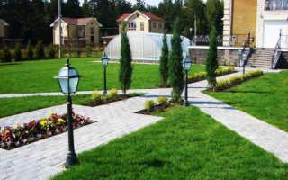 Создание проекта озеленения