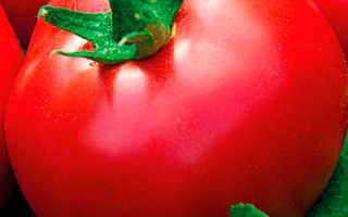 Помидор; Малиновая сладость; F1 Сорт, описание и характеристика, урожайность, фото