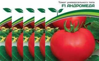 Томат Андромеда F1: описание раннего сорта, фото, отзывы, советы по выращиванию, посадке и уходу, урожайность гибрида