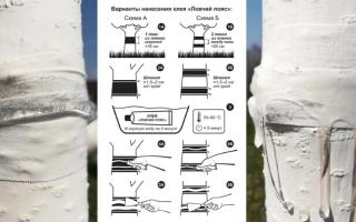 Ловчий пояс для деревьев: инструкция по изготовлению