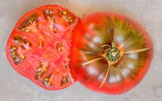 Помидор не фиолетовый клубника: описание сорта, обзор, фото
