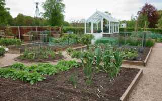 Правила посадки картофеля в грядках