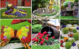 Цветоводство: устройство цветника