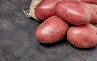 Распространенные сорта красного картофеля