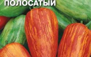 Полосатый помидор в форме перца: характеристики и описание разнообразия, помидор, семена семян