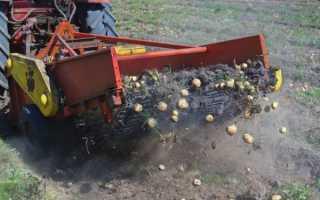 Виды тракторов для обработки картофеля и их использование