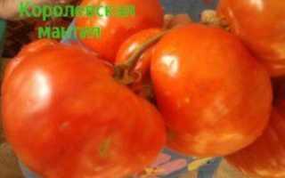 Томатный розамарин: характеристики и описание гибридного разнообразия с фотографией