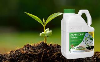 Биопрепараты для надежной защиты растений