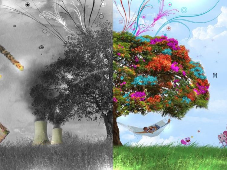 Влияние антропогенных факторов на жизнь растений